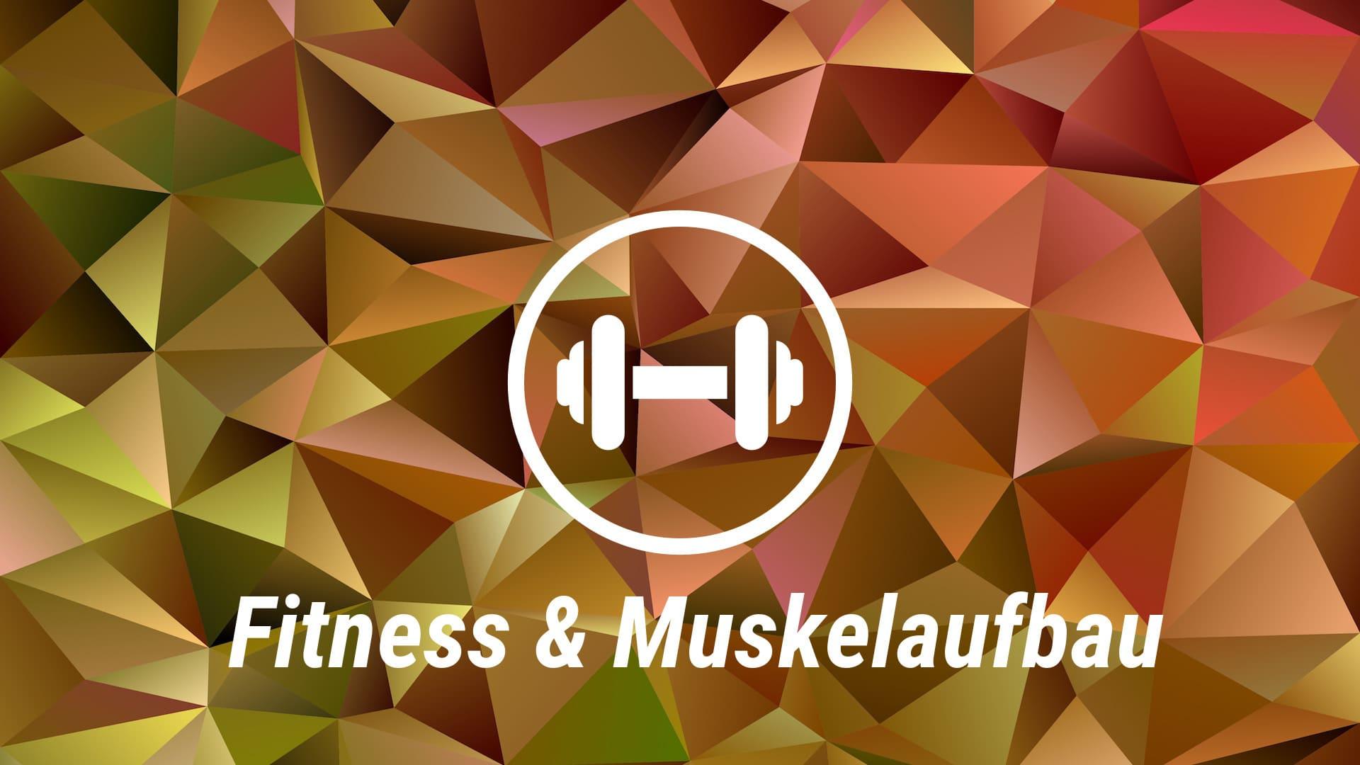 Fitness & Muskelaufbau Kurs Kategorie